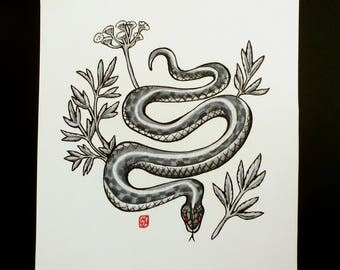 "Garter Snake and Water Hemlock ORIGINAL DRAWING 8.5""x7"""