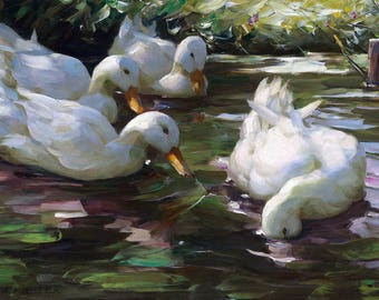 Four Ducks on the Pond Painting by Alexander Max Koester Art Print Reproduction