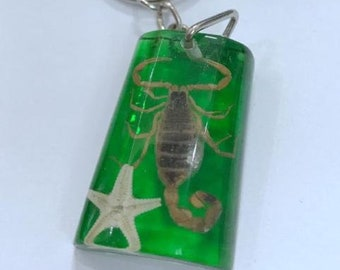 Real Scorpion Green Resin Fashion Keychain Gift - d60
