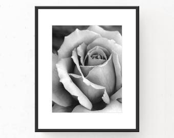Black and White Art Print, Rose Art Print, Digital Download, Printable Wall Art, Printable Art, Rose Photograph, Rose Poster, Rose Closeup