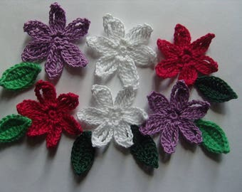 Flowers and leaves in crochet cotton appliques