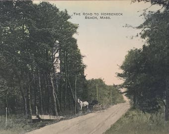 The Road to Horseneck Beach Westport MA Vintage / Antique Postcard