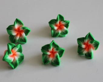orange 1 set of 5 flowers of Polynesia, 15 mm Green polymer