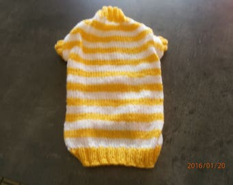 yellow and white striped dog coat