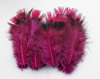 set of 20 feathers fuchsia