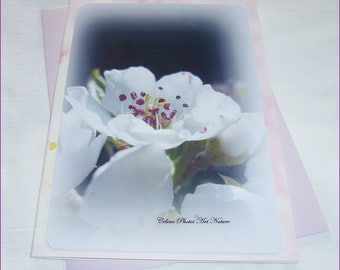 """Double 10 5x15cm made from a photo of pear tree flowers """"pear"""""""