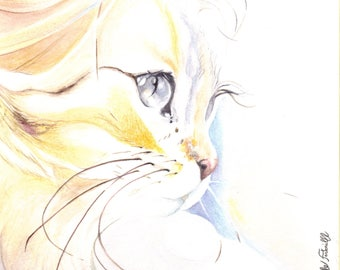 Watercolor cat yellow 16 X 16 cm