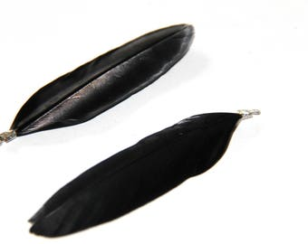 2 black with silver feathers