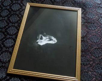 Mouse | Photography | framed
