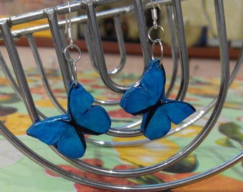Women's earrings, butterfly earrings