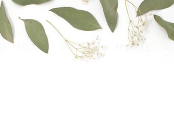 Flat Lay Photo - Styled Stock Photography - Eucalyptus Styled Stock Photography - Flower Stock Images - Stock Images