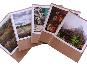5-Pack Blank Cards