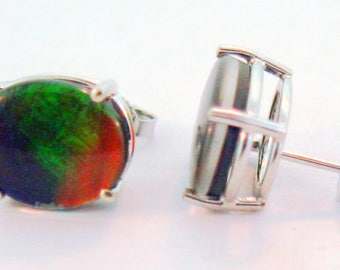 Canadian Ammolite  14k White  Gold Stud Earrings.