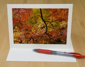 6 card set, Photo Greeting Card Handmade