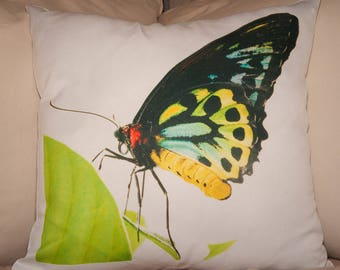 Butterfly Photo Pillow