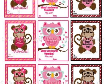 Monkey and Owl Valentines
