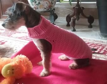 Custom Dog Sweater