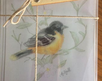 Hand-Sketched Baltimore Oriole Flat-Front Notecard Set/Blessing