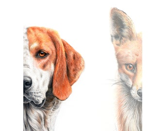 Fox and Hound, Signed, Limited Edition, Mounted print