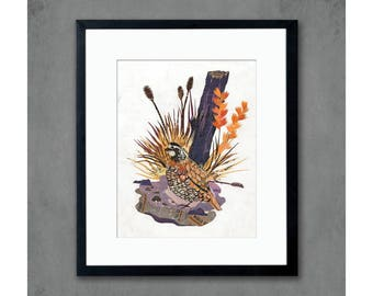 Animals of North America: Quail Art Print