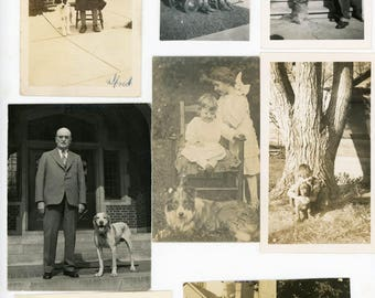 vintage snapshot photo 1920-1940 DOG lovers 8 photo lot of dogs children