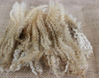Border Leicester Wool Fleece Raw Locks