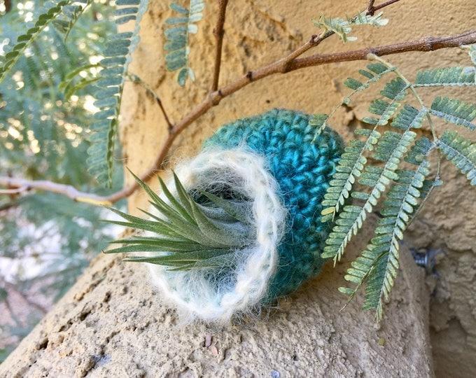 Air Plant Pots Crochet Pattern - Crocheted Vessels Collection Number Two - Tillandsia Pots - PDF Crochet Pattern