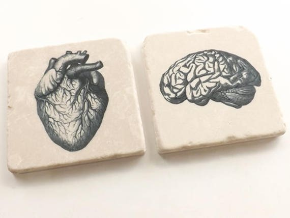 Stone Coasters, Rustic Anatomy theme medical gift, cork back, set of two, four or six, matte finish, housewarming hostess, doctor male nurse