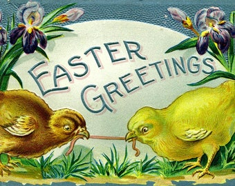Antique EASTER GREETING POSTCARD 1900s Chickies Iris  Embossed Post Card