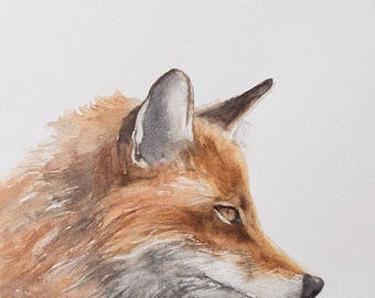 fox painting fox print fox wildlife painting of wildlife animal painting peek a boo animal print SEE PHOTOS to view all 15 PRINTS 11x14 New
