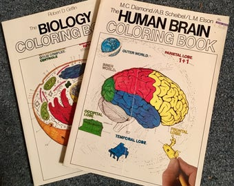 The Human Brain And Biology Set Of 2 Adult Coloring Books