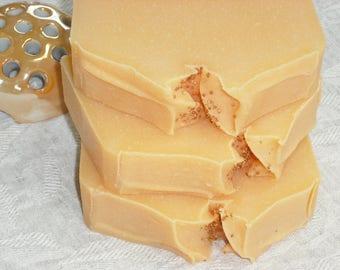 Cranberry Orange Soap / Refreshing Fruity Sweet Tart / Natural Artisan Soap / Cold Process Soap / Handmade Soap