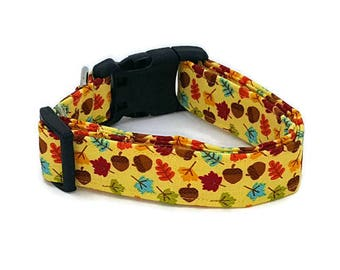 I am Falling for You Leaves and Acorns on Yellow Dog Collar Fall Harvest