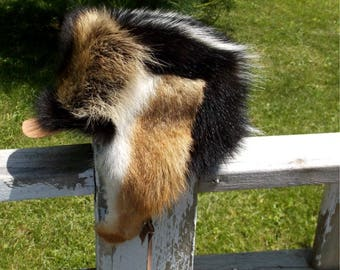 Skunk fur hat with raccoon front and coyote ear flaps and purple fleece liner