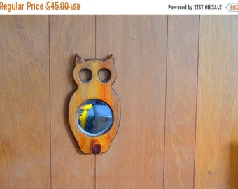 CIJ SALE 25% OFF vintage handmade owl mirror wall hanging / retro owl / wood wall hanging