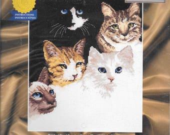Janlynn #013-0249 Cat's Eyes Counted Cross Stitch Kit