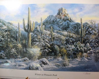 Gerry Metz Winter at Pinnacle Peak Scottsdale Arizona Limited Edition Print Signed