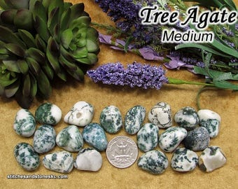 Tree Agate (medium) tumbled stone for crystal healing
