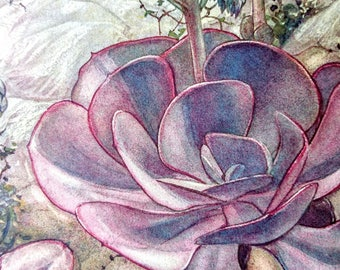 Vetplanten, by A. J. Van Laren, Hardcover book, 1932 - Succulents, Nature, Illustrated Book, Vintage, Antique, Netherlands