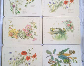 Country Diary Of An Edwardian Lady set of 6 place mats by Clover Leaf nature botanical