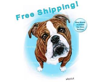 Bulldog, English Bulldog, Bulldog Art, Bulldog Print, Bulldog Painting, Bulldog Drawing, Bull Dog, Pet Portrait, Dog Breeds, Free Shipping!