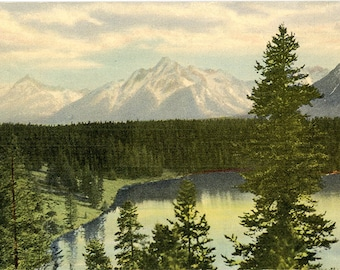 Grand Teton National Park Jackson Hole Wyoming Vintage  Postcard (unused)