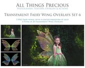 20 High Res Fine Art Digital Png TRANSPARENT FAIRY WING Overlays Set 6