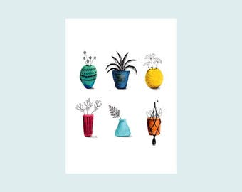 House plants, illustrated card, postcard