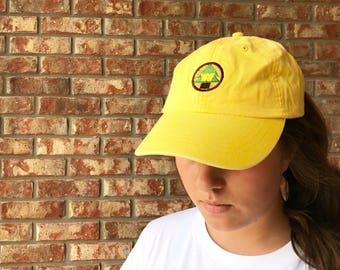 Up inspired wilderness explorer dad hat, baseball hat