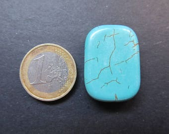 Turquoise 30x22x8mm button