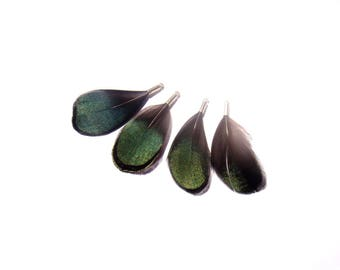 Pheasant / pheasant: feathers natural 37 mm in height approximately 4 pendants