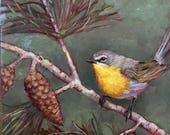"""Yellow Breasted Chat, 8"""" x 8"""", original oil, Krista Eaton, valentines , birds, bird, birder, spring"""