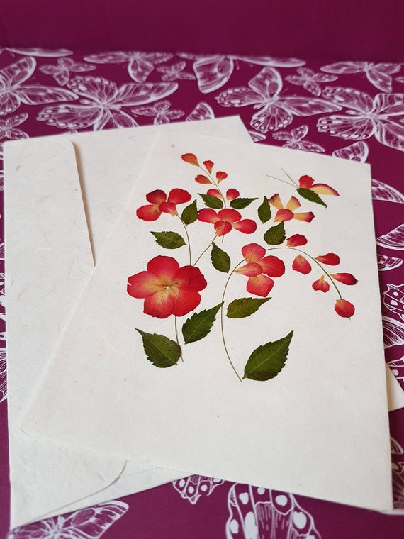 Handmade Blank pressed flower floral nature card