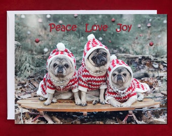 NEW PUG Christmas Card - Pug Christmas Card - Peace r - 5x7